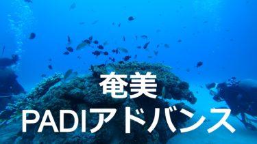 【奄美ダイビング】エンドレスブルーでPADIアドバンスライセンスを取ってきた